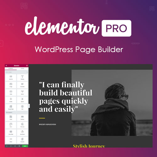 Elementor Pro plugin wordpress